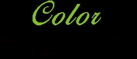 カラー 最良の色をカウンセリングで選択し調合いたします